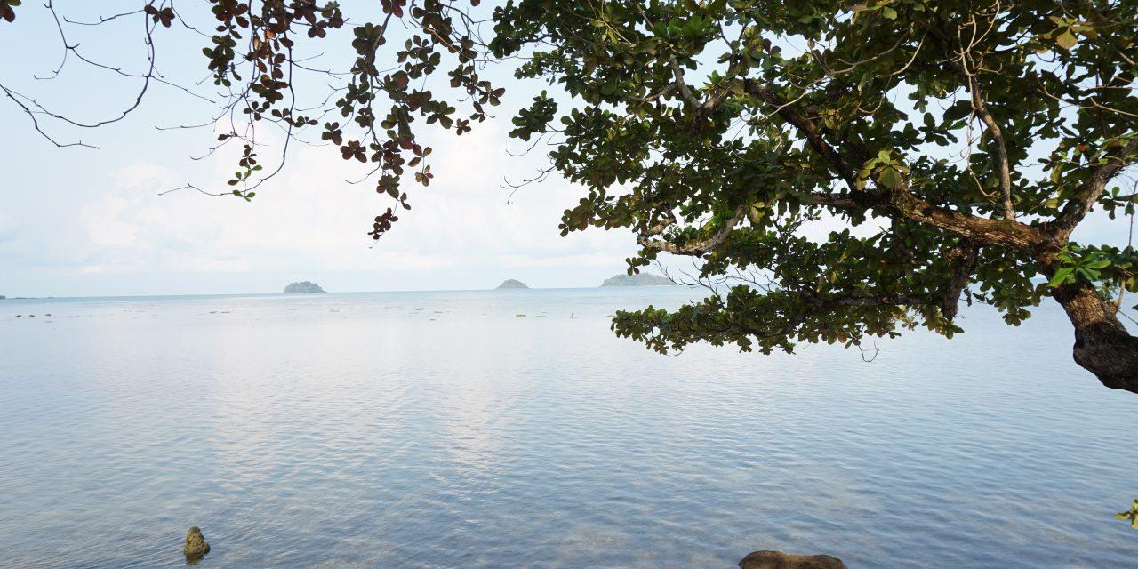 Awa Resort Koh Chang l เอวา รีสอร์ท เกาะช้าง